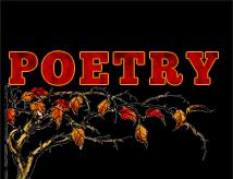 poetry214x164