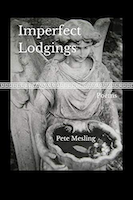Imperfect Lodgings: Poems